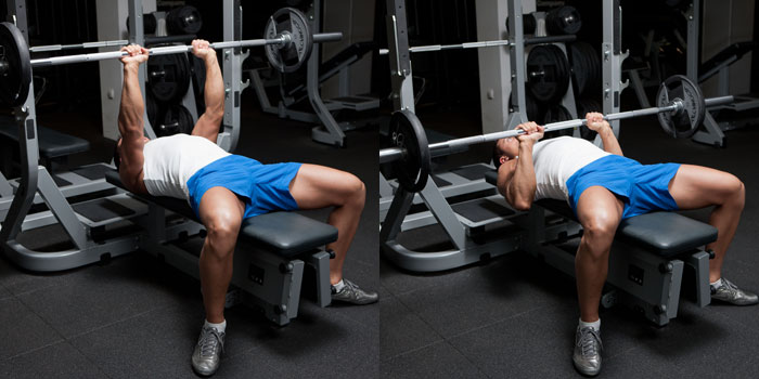 5c791ae615a9 The Bench Press  A Bio-Mechanical Assessment – Taylor s Strength ...